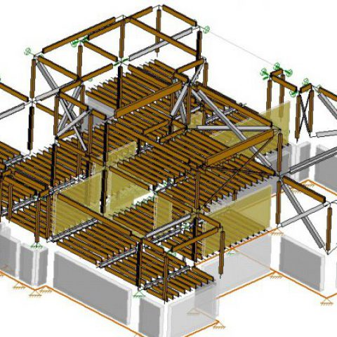 A fully Developed Structural Model by Siemanowski Consulting Inc